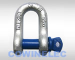 Screw Pin Chain Shackle G210
