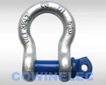 Screw Pin Anchor Shackle G209